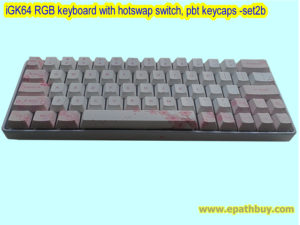 iGK64: 64key hot swap MX-based switches mechanical keyboard with blossom dye-subbed PBT keycaps (fairy), wired keyboard with USB type C port